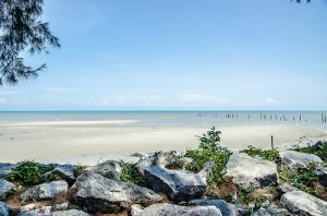 Tanjung Sepat One Day Trip